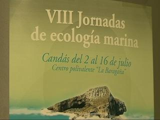 Cartel de las VIII Jornadas de ecología marina