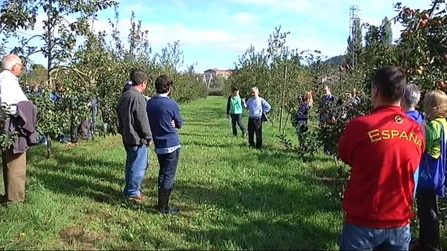 Presentación de las variedades de manzana