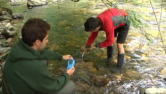 Voluntarios recogen muestras de invertebrados en los ríos de los Picos de Europa