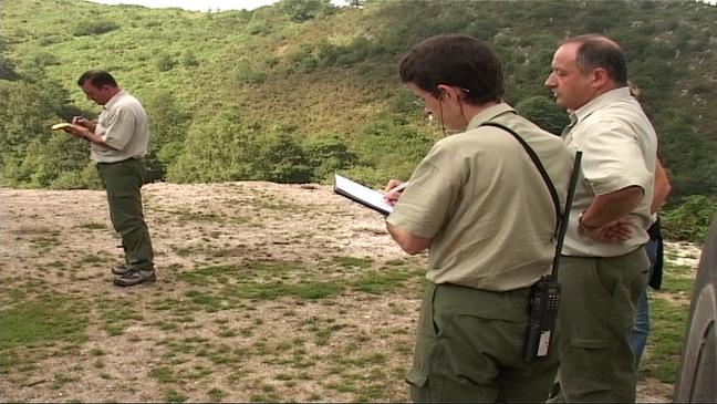 Guardas forestales