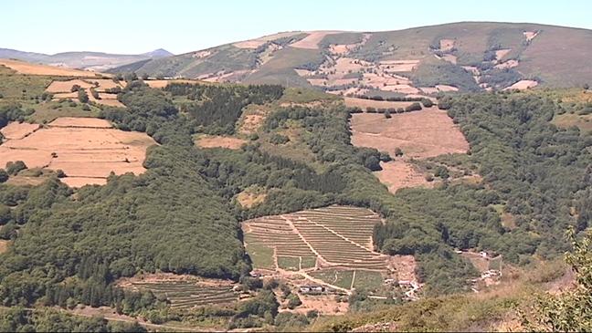 Paisaje de Asturias
