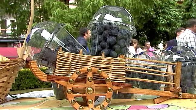 Frutos rojos en el primer festival dedicado al arándano en España