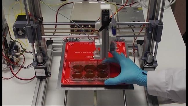 Investigadores asturianos desarrollan una biotinta con sobrante de sangre y tejidos