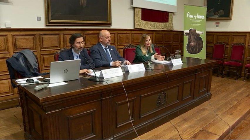 Jornada de análisis sobre el uso de animales en los festejos españoles
