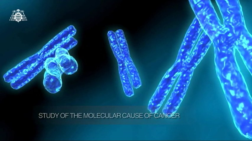 Study of the molecular cause of cancer