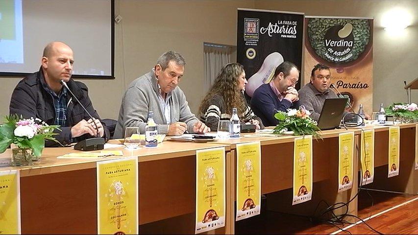 La faba asturiana busca proyección internacional