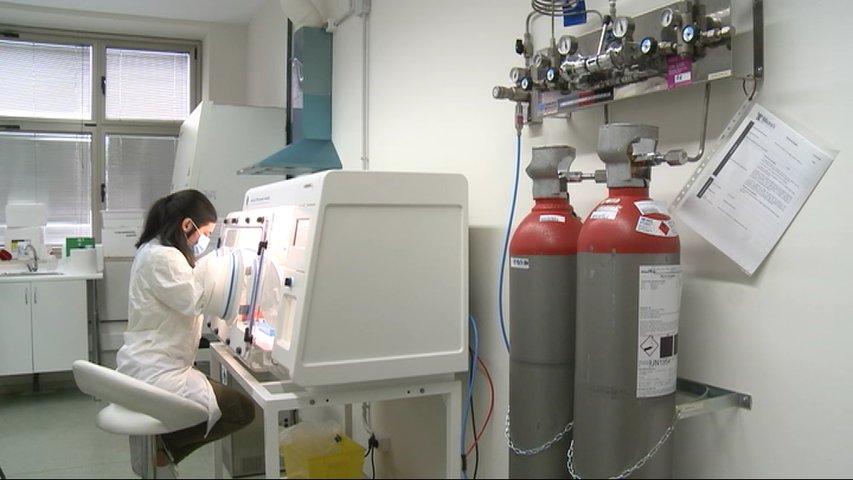 Laboratorio donde estudian la microbiota para paliar secuelas del covid