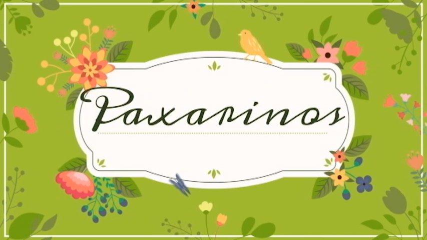 Cabecera de 'Paxarinos TV'